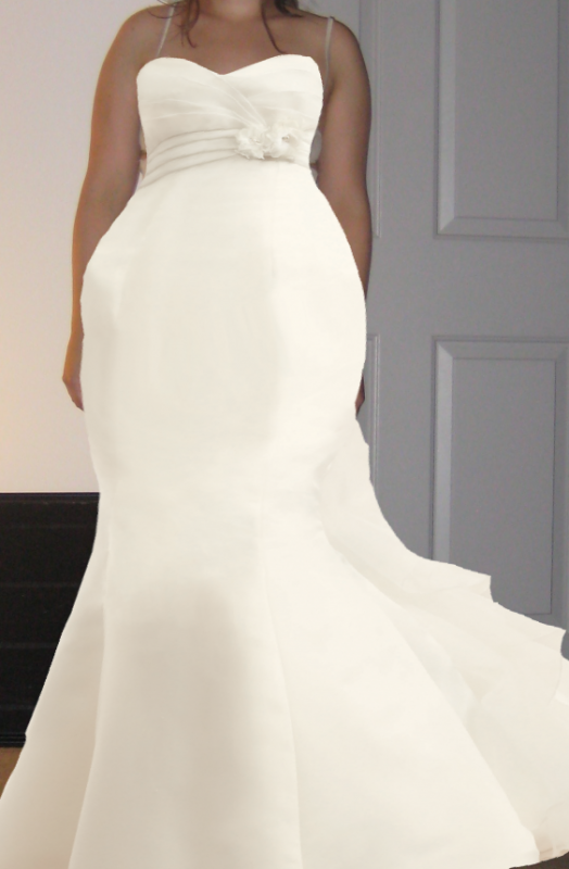 Wedding dresses for big hips gown and dress gallery for Wedding dresses for big hips