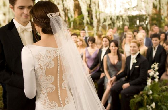 Bella's Wedding Dress from Breaking