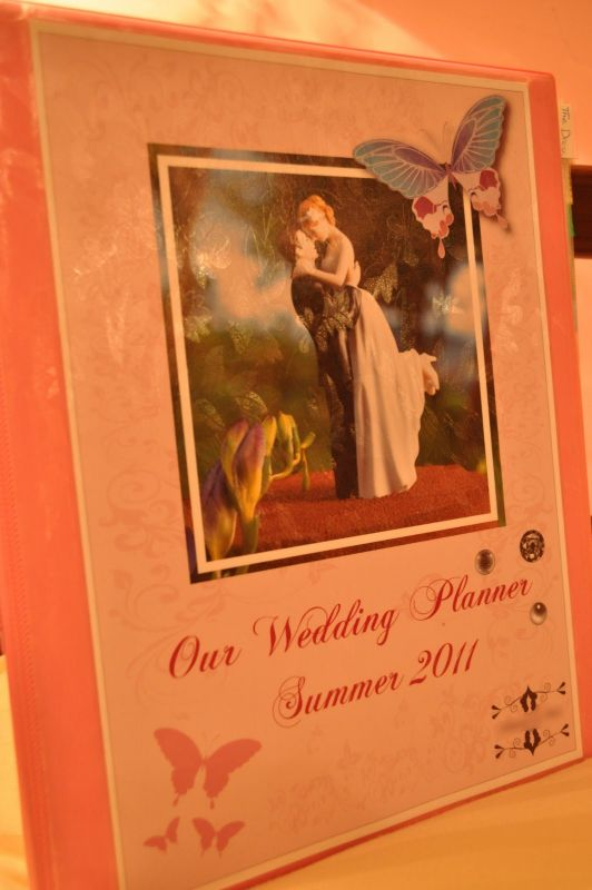 Wedding Organizer Binder wedding pink diy DSC 0509