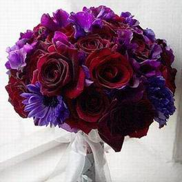 http://bios.weddingbee.com/pics/103068/115543bouquet_purple_red_2.jpg