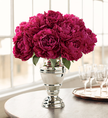 Peonies :  wedding Missmaine Peonies