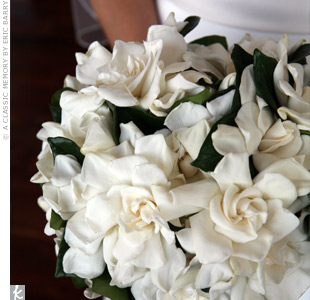 Magnolia Bouquet :  wedding Magnolia