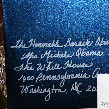 we had navy blue shimmer envies and used the Sharpie med point in silver