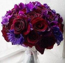 Purple & Red Weddings