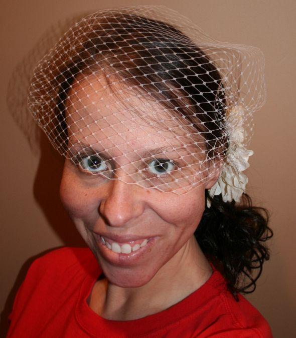 My DIY Birdcage Veil wedding 005resize