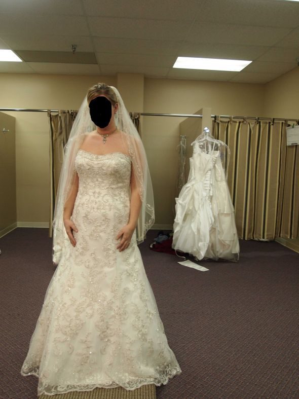 plus size show us your dress weddingbee page 9