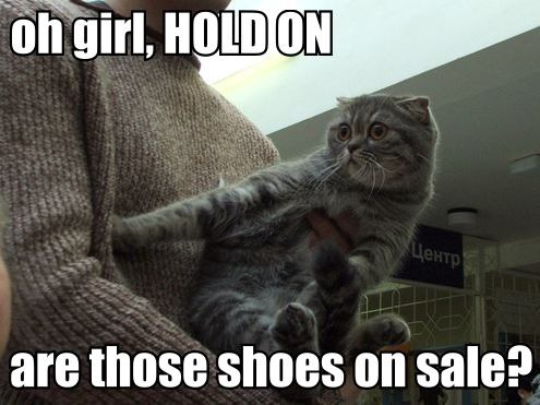 lol cat shoes