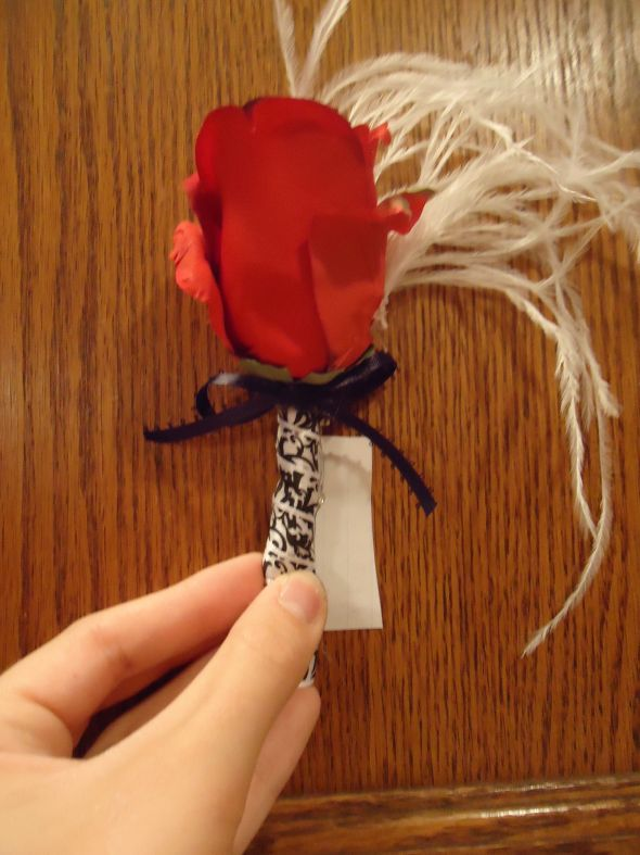 My diy glam Damask red rose, feather