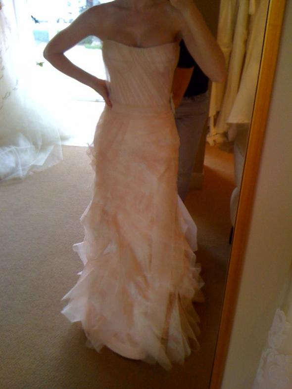 me in blush colored gowns (tried on just for the color) :  wedding blush Photo1