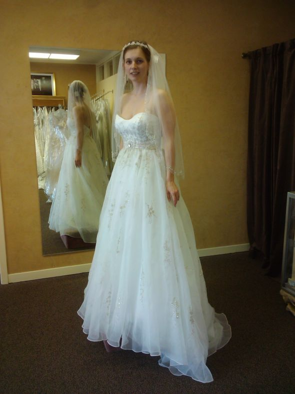 Rate the dress!!! (pictures Galore!)