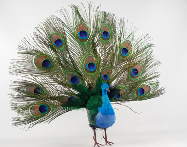 Cheap Peacock Wedding Decorations
