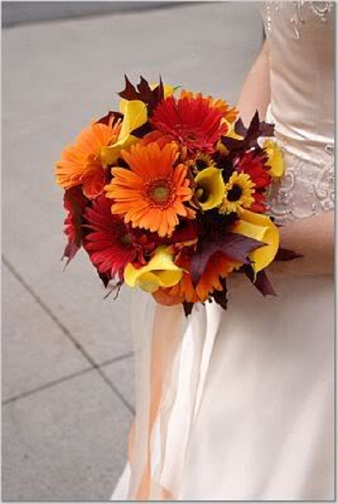 Fall wedding ideas wedding Wedding Planning 101 Dot Com