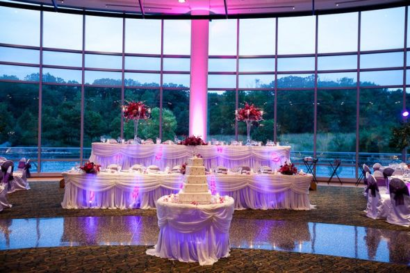 Wedding world wedding decor rental chicago reception decoration chicago reception decoration weddingbee gallery junglespirit Images