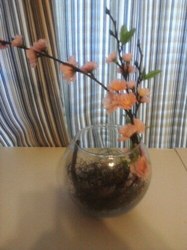 Cherry Blossom Centerpieces Posted 8 months ago by leefrancis79 in