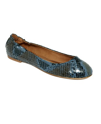 Anyone with animal print wedding shoes wedding shoes flats blue animal