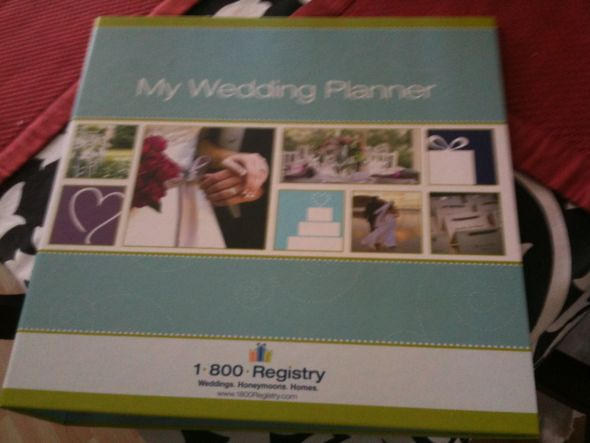 I used a really cool binder from OfficeMax My Wedding Planner Organizer