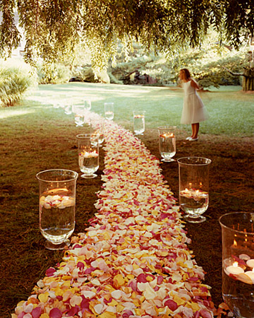 Wedding Other Flowers Photos :  wedding aisle candles flowers ivory petals pink yellow Msw Fall99 Candlelight Xl