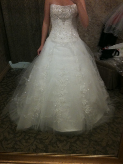 My Wedding Dress Came In!! Opinions Needed :)