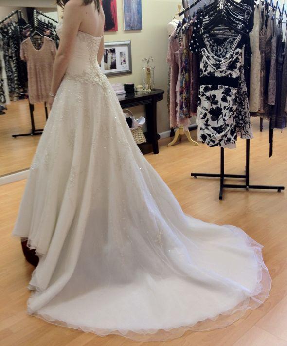 Veil Help Allure Brides
