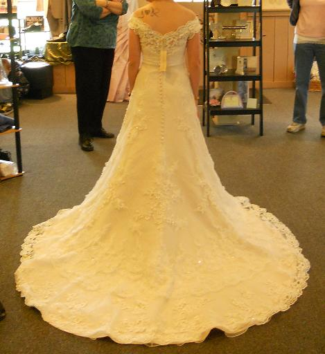 The real deal! :  wedding casablanca champagne dress Dress Back