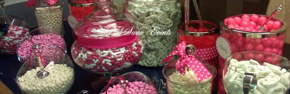 Candy Buffet Container Rental DC VA MD photo 1