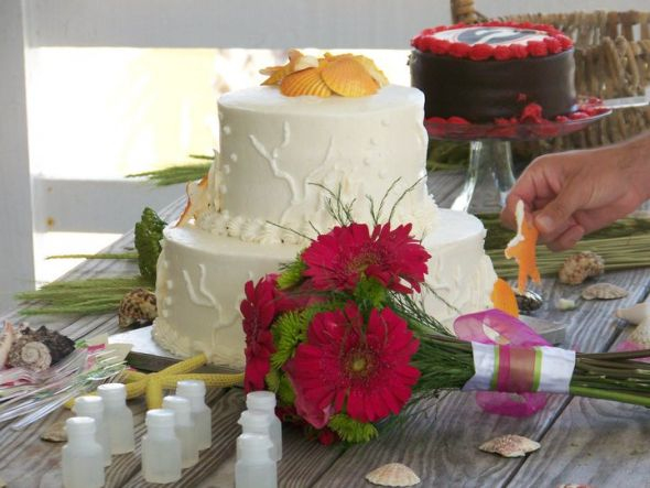 Publix Italian Wedding Cake Bar View Gowns Hippie Ideas Candy At