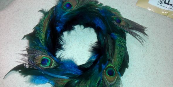 peacock feathers :  wedding IMAG0900