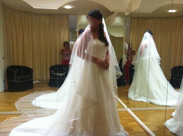 Does this veil compliments the dress