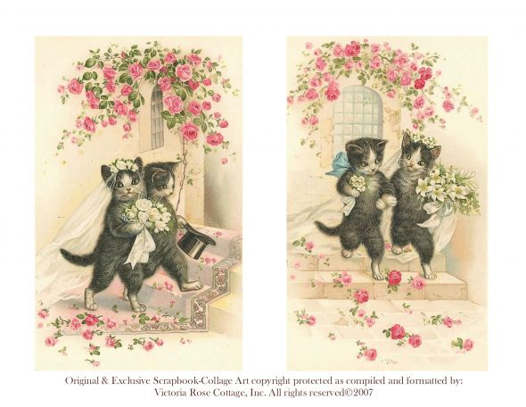 Anyone else incorporating cats into their wedding theme calling all vintage wedding cats how purrfect is this junglespirit Gallery