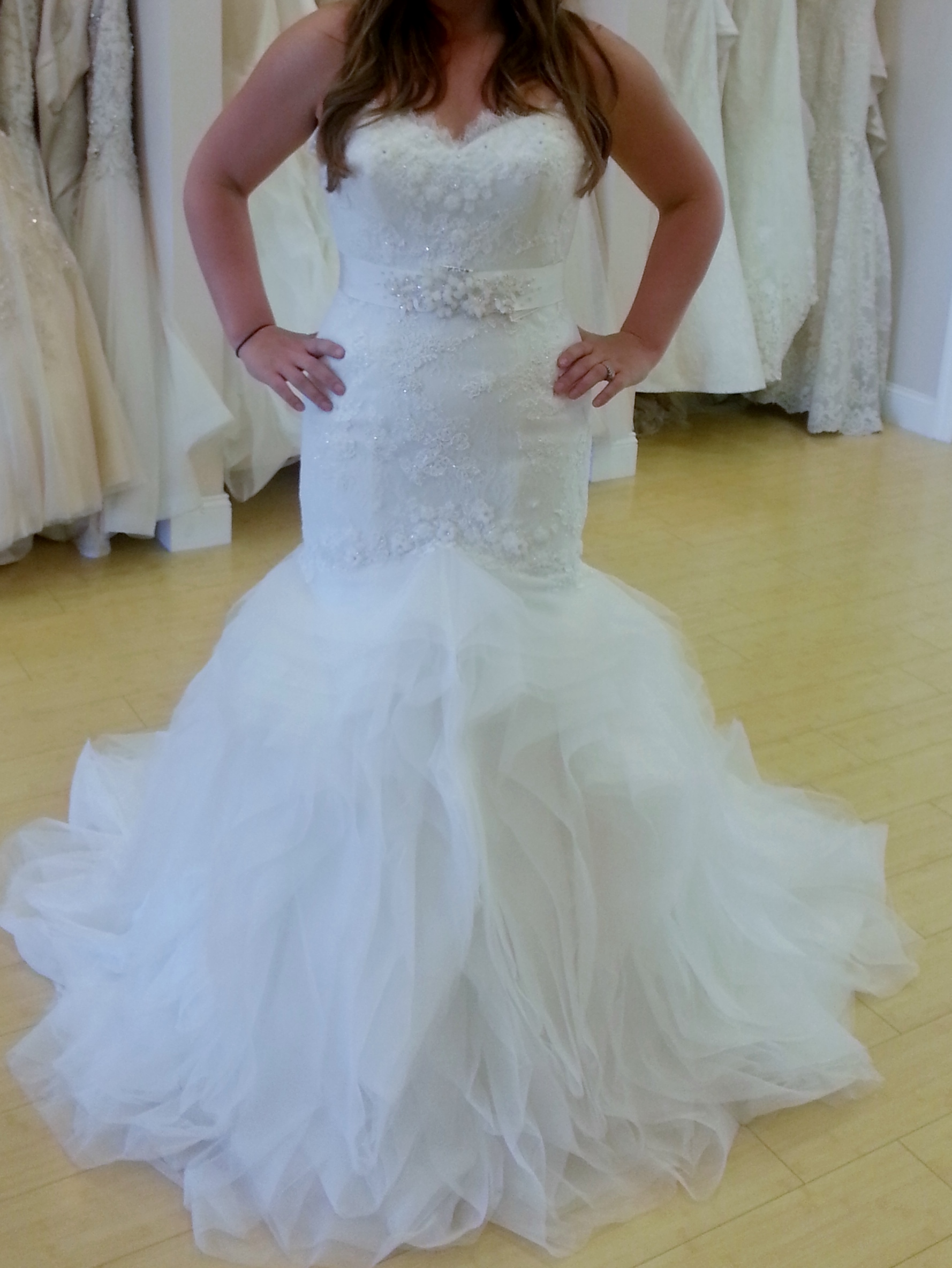 I picked my dress!! Pronovias Leiben! Sash or No Sash?!