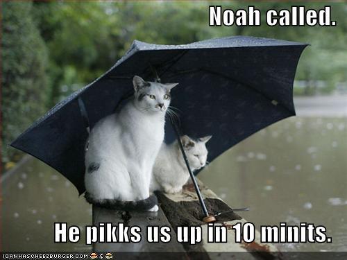 Post Thumbnail of The Rainy Easter Winner Post