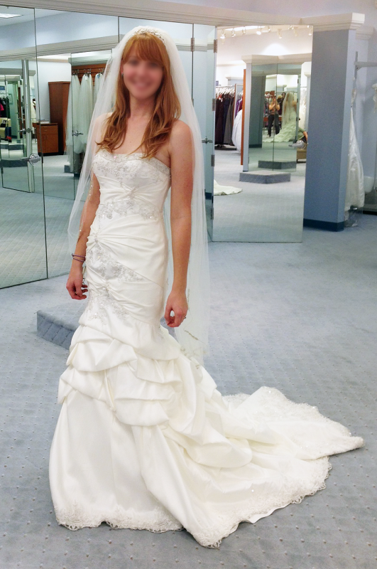 The Northern Bride: Fairy Tale Wedding Dresses- Disney
