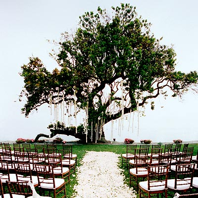 Aisle/Ceremony Decor Help Needed - Weddingbee