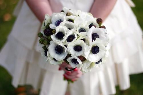 White And Black Anemones Poppies