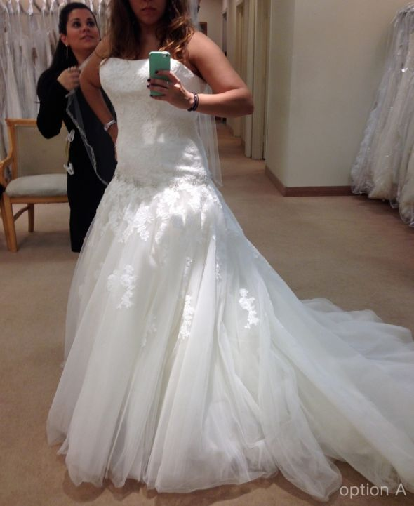Ball gown dress decisions… please help!