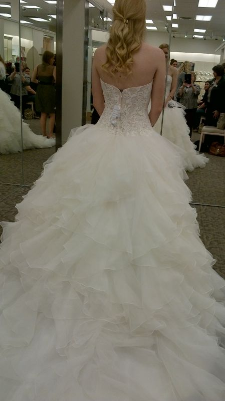Found my DRESS!! NEW Oleg Cassini pics