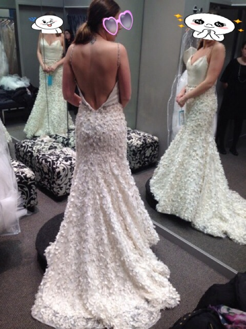 After thinking I found my dress, I actually really found MY DRESS ...