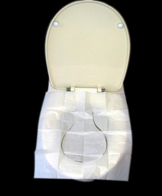 RANDOM! Help Settle a Debate about Toilet Seat Covers!