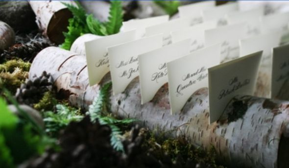 BIRCH LOG NAME PLACE CARD HOLDERS woodsie wedding wedding birch card