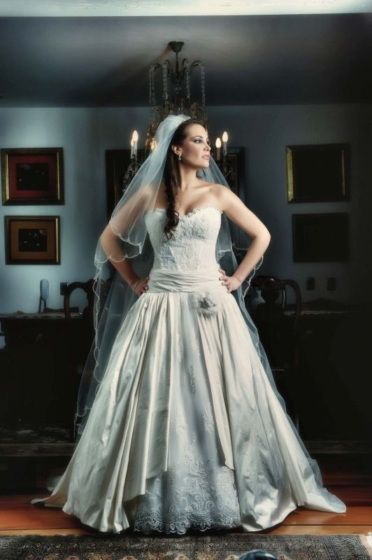 Pnina Tornai Gown wedding pnina tornai princess ball gown ivory dress DSC