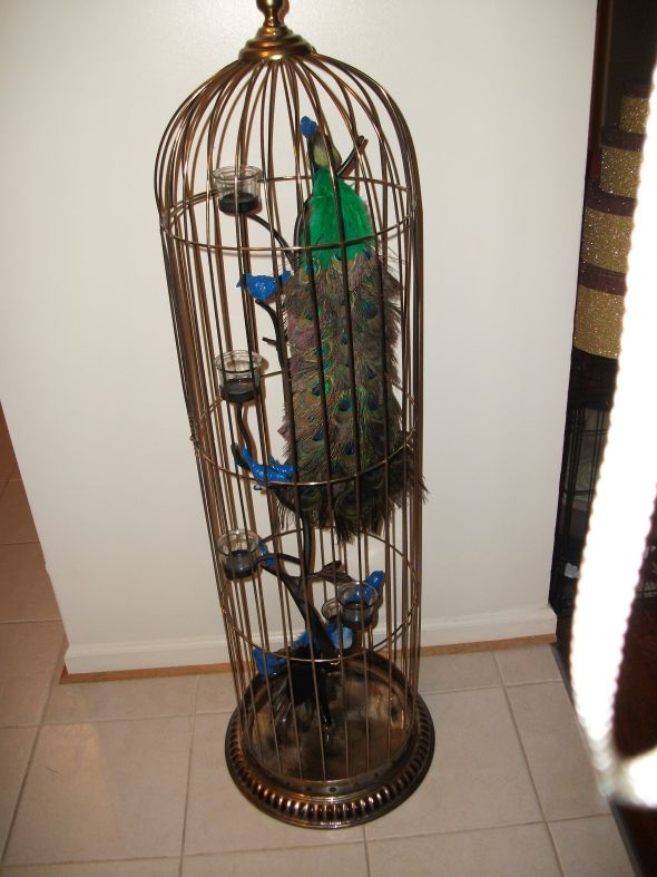 Birdcages wedding peacock bird cage birdcage ceremony teal blue navy