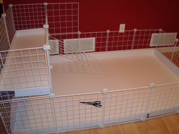 Our new huge 2 level guinea pig cage which we built for How to make a guinea pig cage