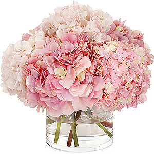 Flower recommendations for wedding color scheme... :  wedding flowers august color scheme Pink Hydrangea