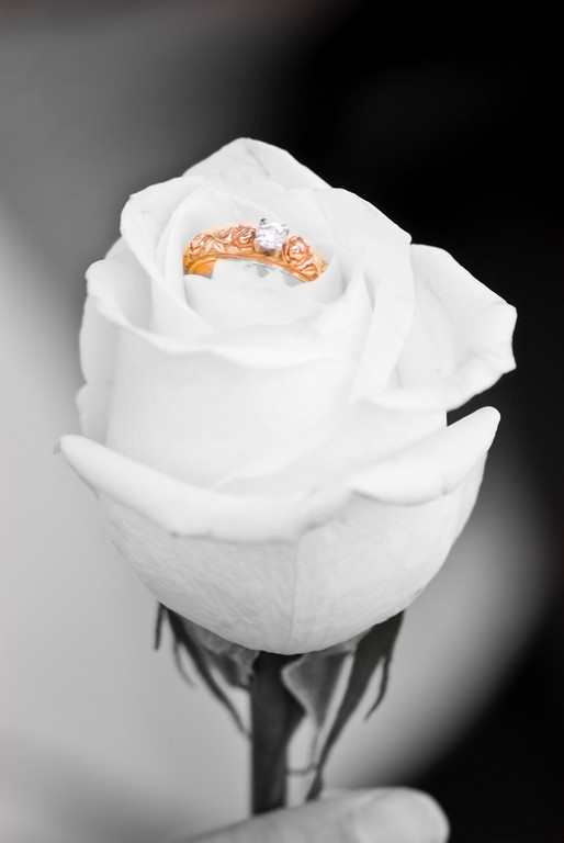 I have a yellow gold engagement ring with roses in rose gold
