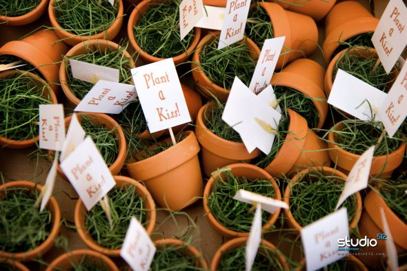 Flowers Healthy : mini flower pot favors - startupinsights.org