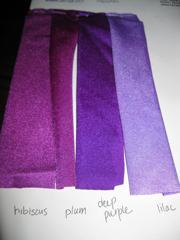 The Search Through the Rainbow of Purples :  wedding dress bridesmaid purple IMG 2670
