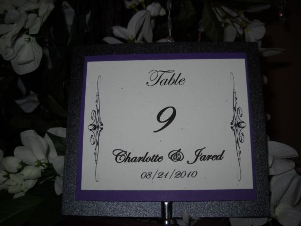 Menu Seating sashes Table Numbers wedding Chair Sashes 005