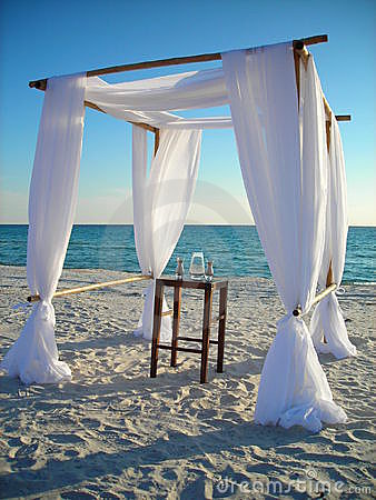 Diy Wedding Arch Beach diy wedding arbor