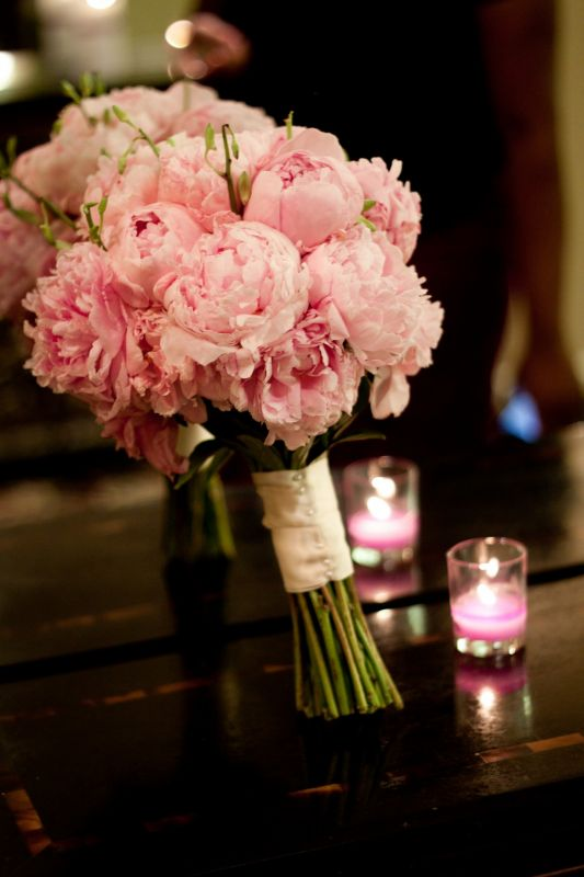 My peonies!! :  wedding Ngozi  Rodney0864