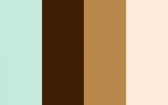 SWATCH B Aqua Chocolate Latte Ivory Which Wedding Color Palette